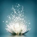 Incontri individuali MEDITAZIONE del CUORE per Connetterci al nostre Sè Divino